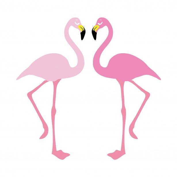 Flamingo Illustration Clipart Free Stock Photo.