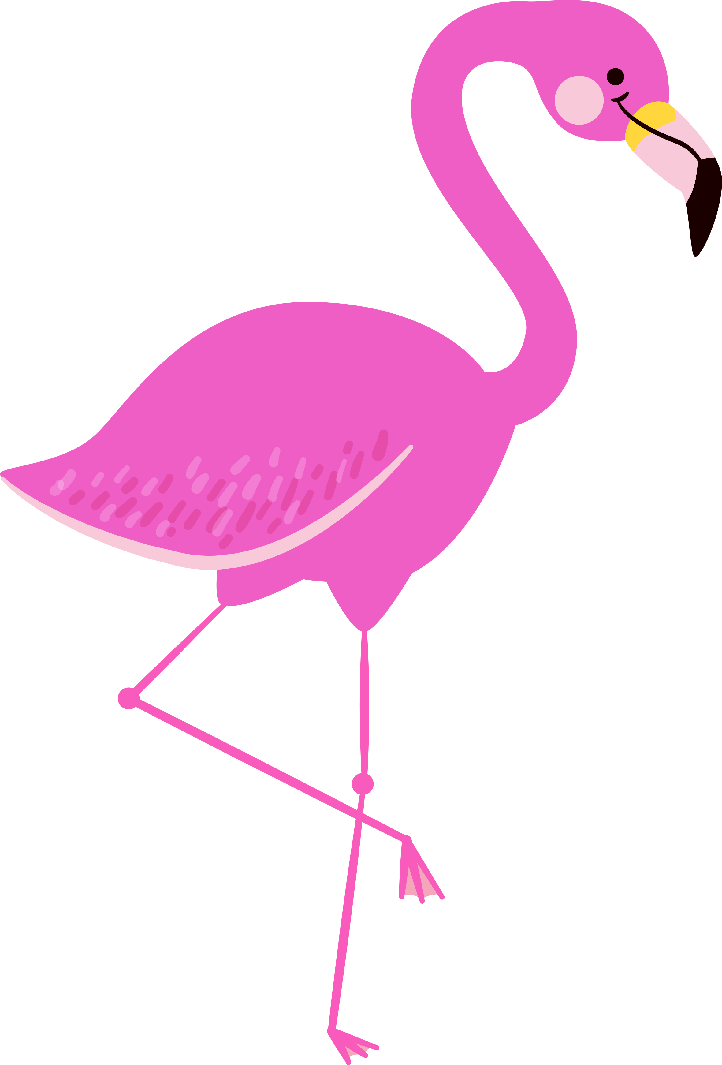 Flamingo clipart transparent background, Picture #1115093.