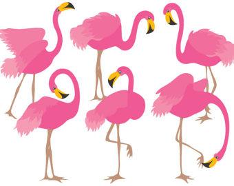 Flamingo Clipart Images.