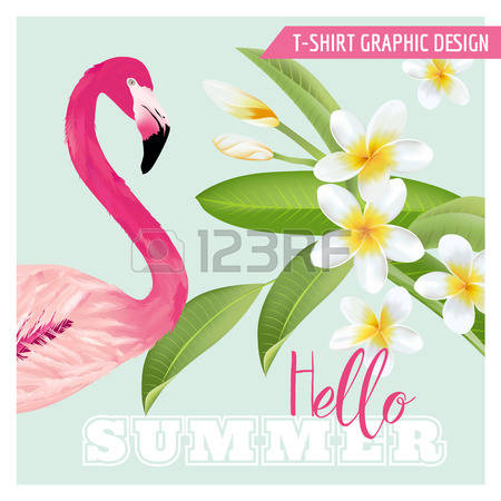 995 Flamingo Flower Stock Vector Illustration And Royalty Free.
