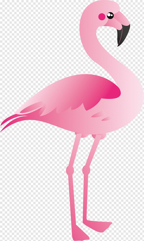Pink flamingo illustration, Plastic flamingo, Cartoon.