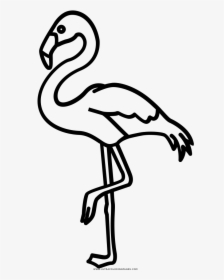 Flamingo Drawing Outline.