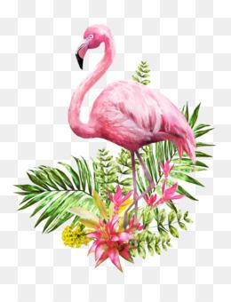 Flamingo PNG.