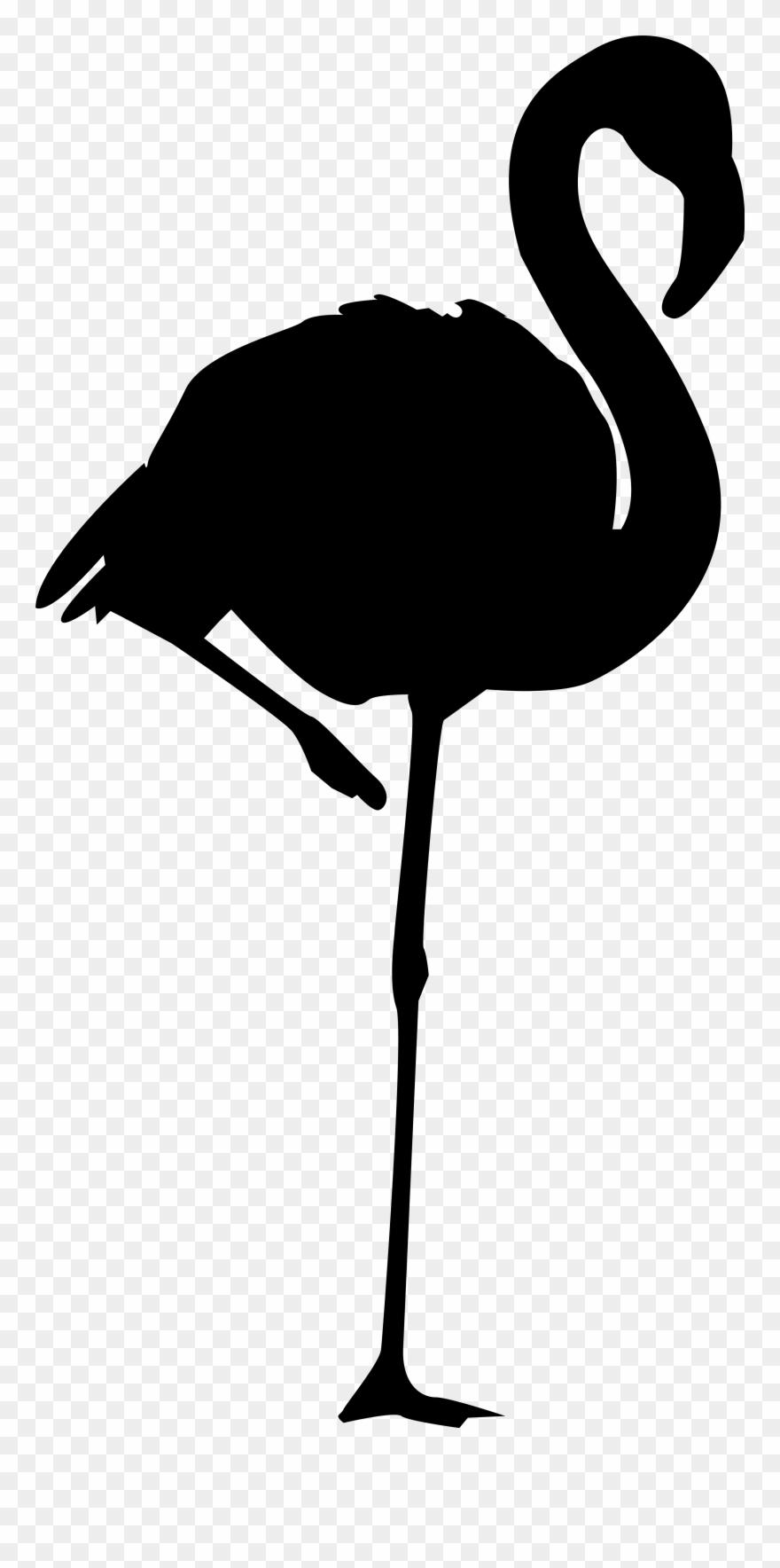 Flamingo Silhouette At Getdrawings.