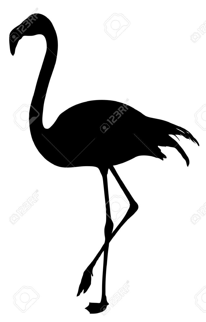 flamingo silhouette on a white background.
