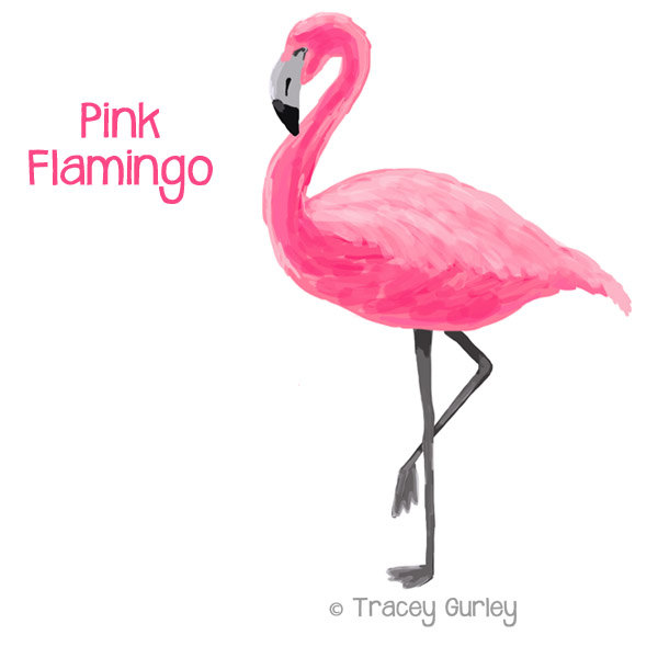 The flamingos clipart - Clipground