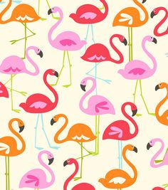1000+ images about Flamingo, tropisch on Pinterest.