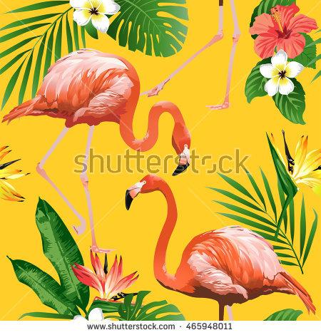 Flamingo Yellow Stock Photos, Royalty.
