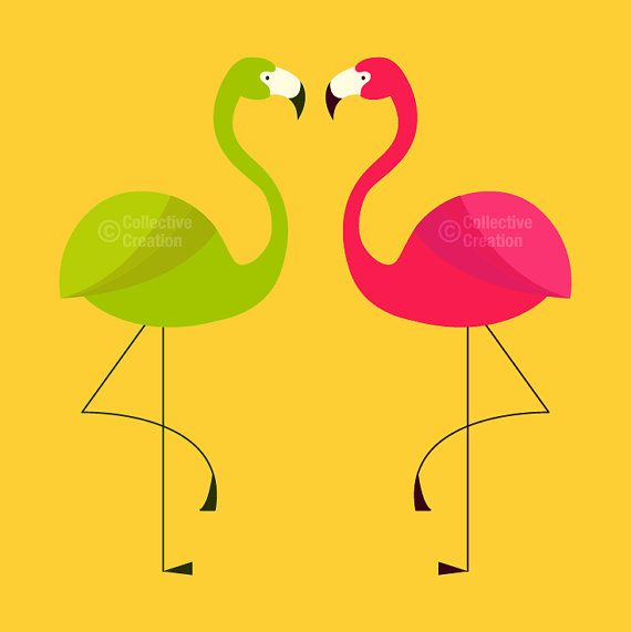 1000+ images about flamingo on Pinterest.
