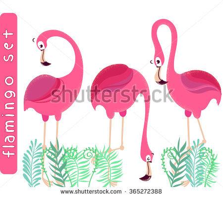 Three Flamingos Stock Photos, Royalty.