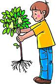 Clip Art of tree, fruit, plants, plant, plant life u28743726.