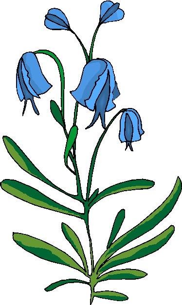 Plants Clip Art.