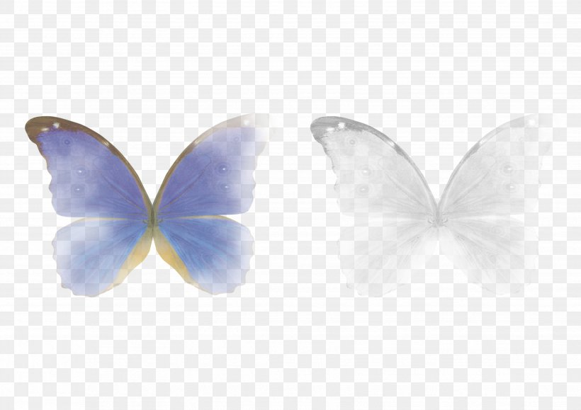 Butterfly Lens Flare Clip Art Adobe Photoshop, PNG.