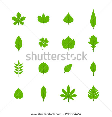 Chestnut Leaf Stock Photos, Royalty.