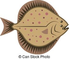 Flatfish Illustrations and Clip Art. 231 Flatfish royalty free.