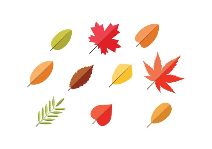 Leaf Flat Icon Vector.