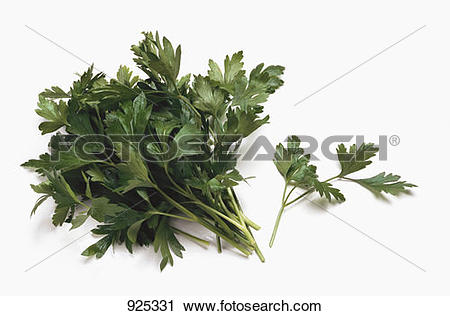 Stock Photography of A bunch and a sprig of flat.