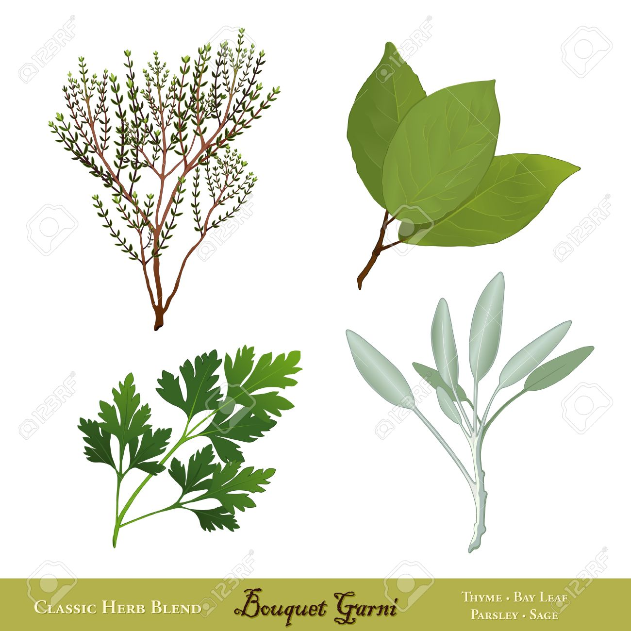 Bouquet Garni, Traditional French Herb Blend Bay Leaves, English.