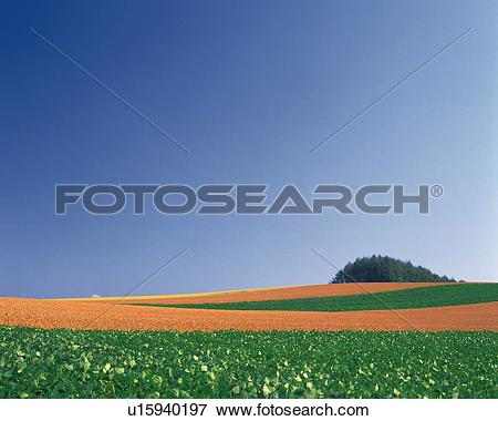 Picture of a Huge Flat Land With a Small Hill Visual at the End.