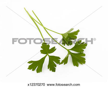 Stock Photography of Flat.