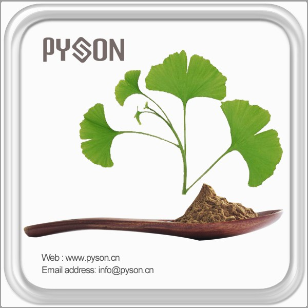 Best Selling Natural Flavonoids Ginkgo Biloba Extracts.