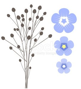 Flax Clipart Image.