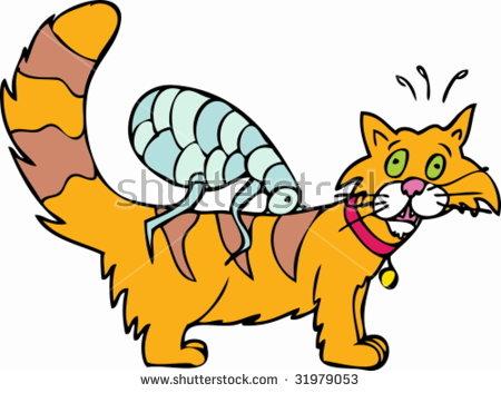 Cat Flea Bite Stock Vector Illustration 31979053 : Shutterstock.