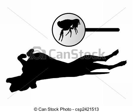 Dog flea Clipart and Stock Illustrations. 515 Dog flea vector EPS.