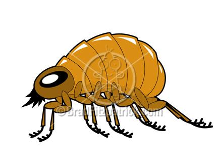 Flea Cartoon Insect Clipart.