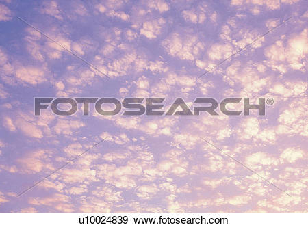 Stock Photograph of Several Fleecy Clouds, a Little Bit Pink From.