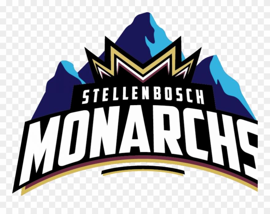 Fleming To Coach Stellenbosch Monarchs In Global T20.