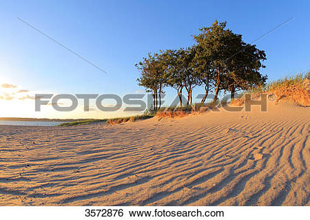 Stock Images of Beach near Flensburg, Schleswig.