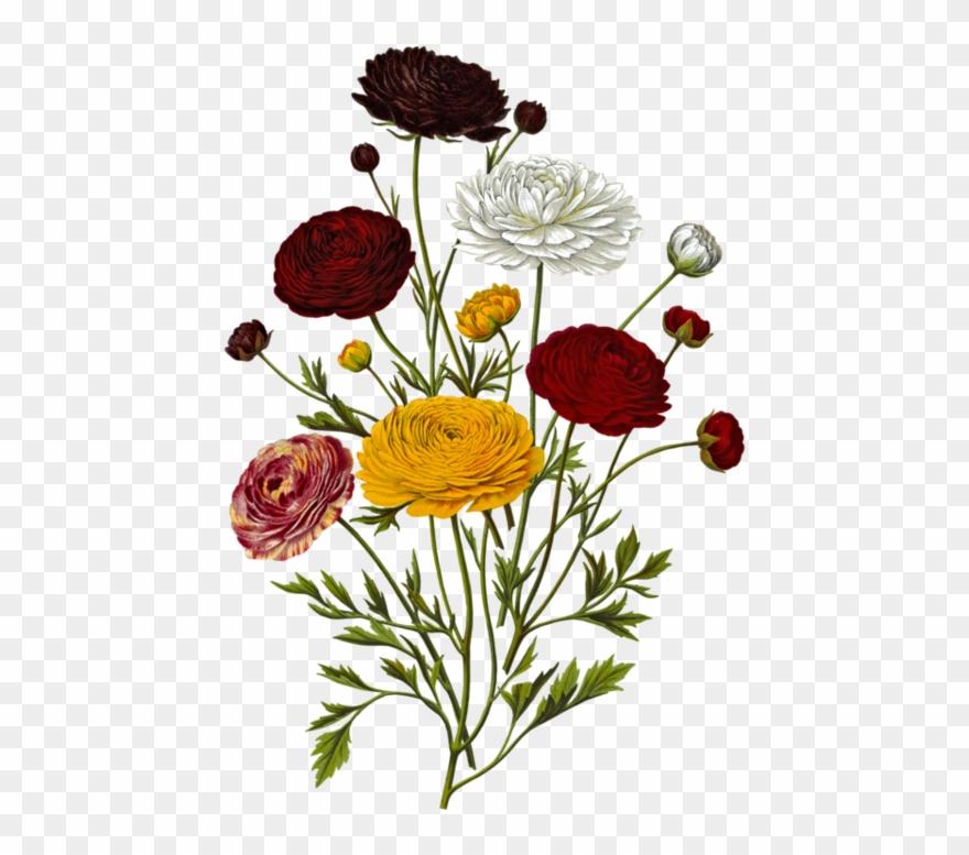 Toutes Les Fleurs, Clip Art.