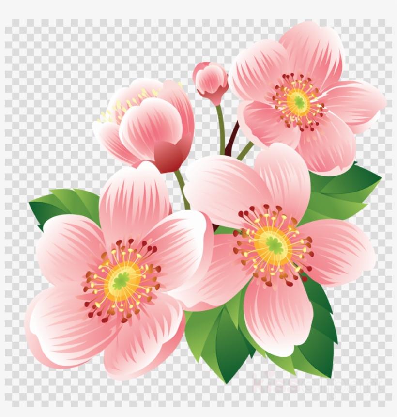 Joli Fleur Png Clipart Flower PNG Image.