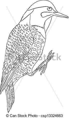 Clip Art Vector of Northern flicker bird.