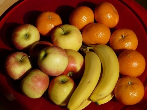 Fruit free stock photos download (2,193 Free stock photos) for.