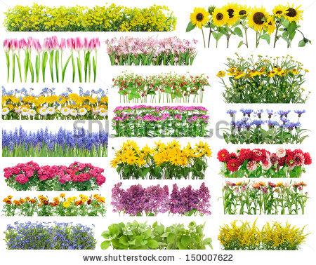 Leaf collage free stock photos download (2,091 Free stock photos.