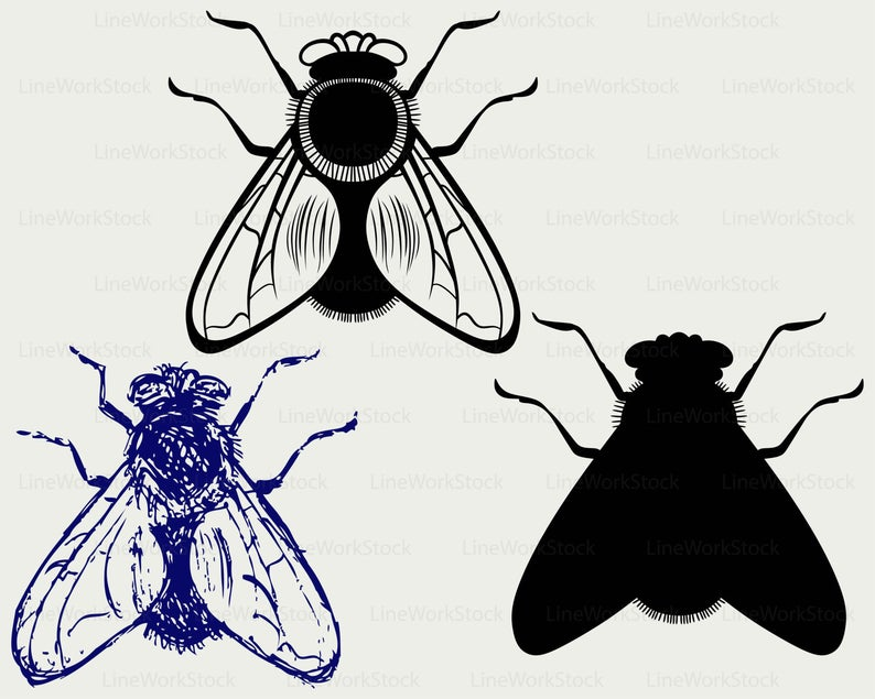 Flies svg/black flies clipart/flies svg/flies silhouette/insects  cricut/flies cut files flies clip art/digital download/designs/svg.