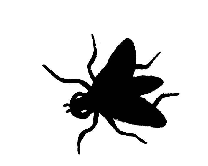 Flies clipart outline.