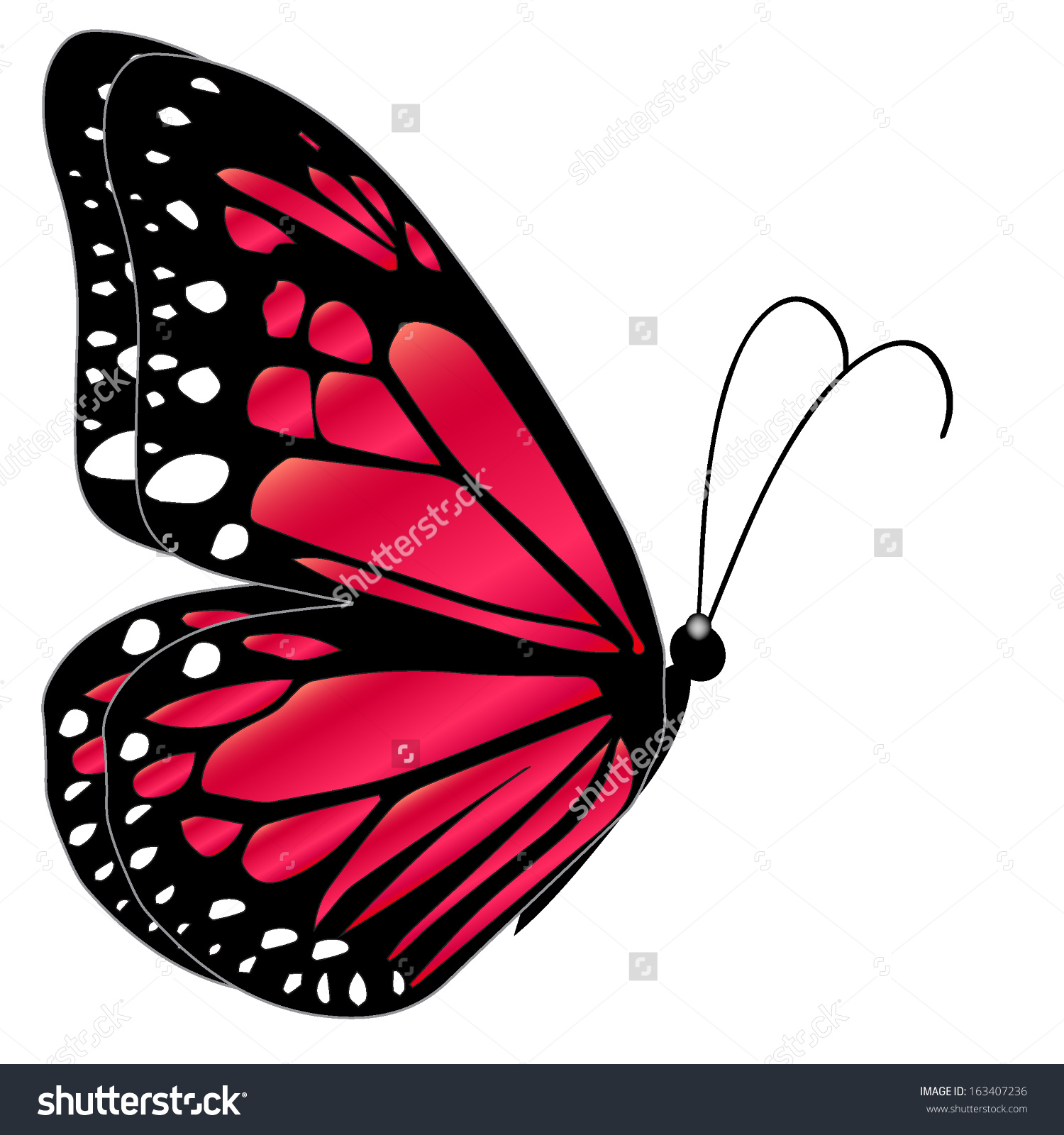 Illustration Red Butterfly Flying On White Stock Vector 163407236.