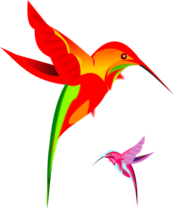 Free vector graphic: Hummingbirds, Colorful.