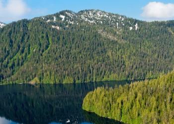 Mendenhall Glacier Paddle & Trek • Alaska Shore Tours.