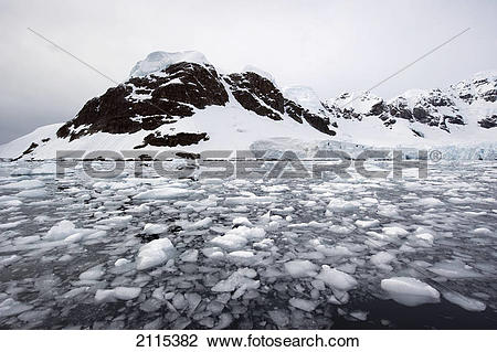 Stock Photo of Chunks of ice floating in the water along the.