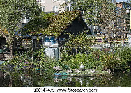 Stock Image of Floating cottage with plants u86147475.