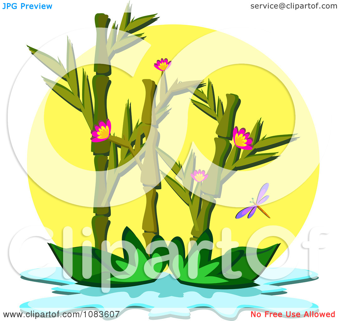 Clipart Bamboo Plant Floating On A Pond.