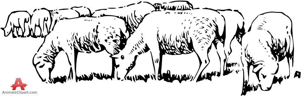 Flock of Sheep Clip Art.