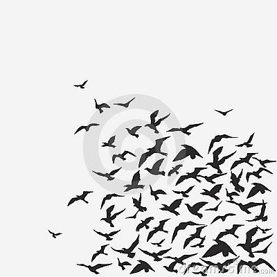 Flock Of Birds Royalty Free Stock Image.