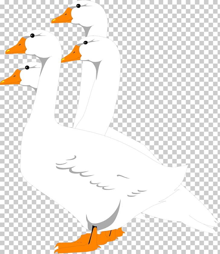 Goose Bird Flock , goose PNG clipart.