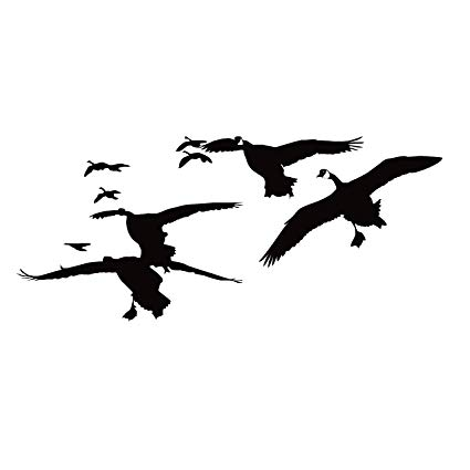 Amazon.com: Goose Hunting Decal Flock of Geese Decal Goose.