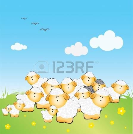 1,455 Flock Of Sheep Stock Vector Illustration And Royalty Free.
